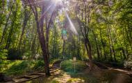 Lesopark Búroš a cvičenie v prírode