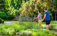 Fitpark Smaragd - aromaterapia