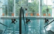 Rehabilitácia v relaxačnom bazéne - Kúpele Dudince